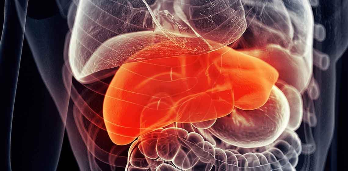 health-liver